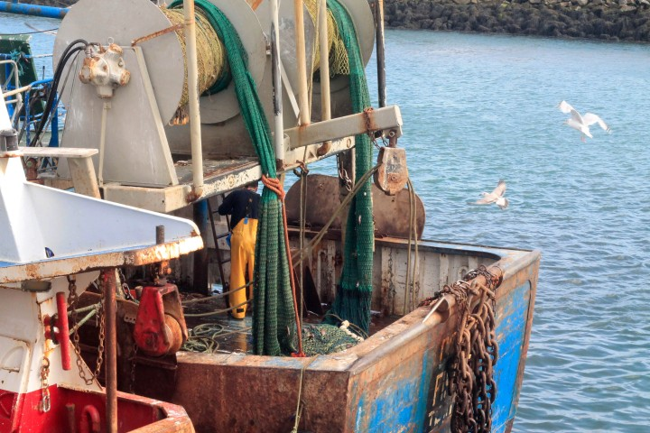 Seagulls flock to a fishing boat as a fisherman cleans the deck in Howth.