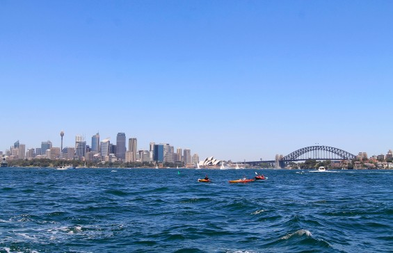 Sydney's stunning harbor and skyline, as seen from a ferry.