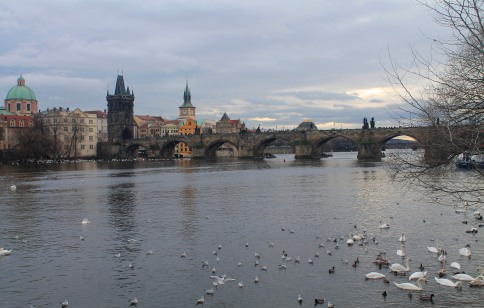 The St. Charles Bridge from across the river.
